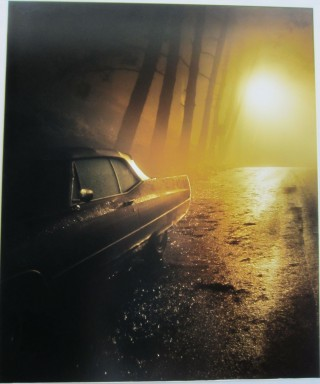 Original chromogenic print on aluminum Untitled #3737. Todd HIDO